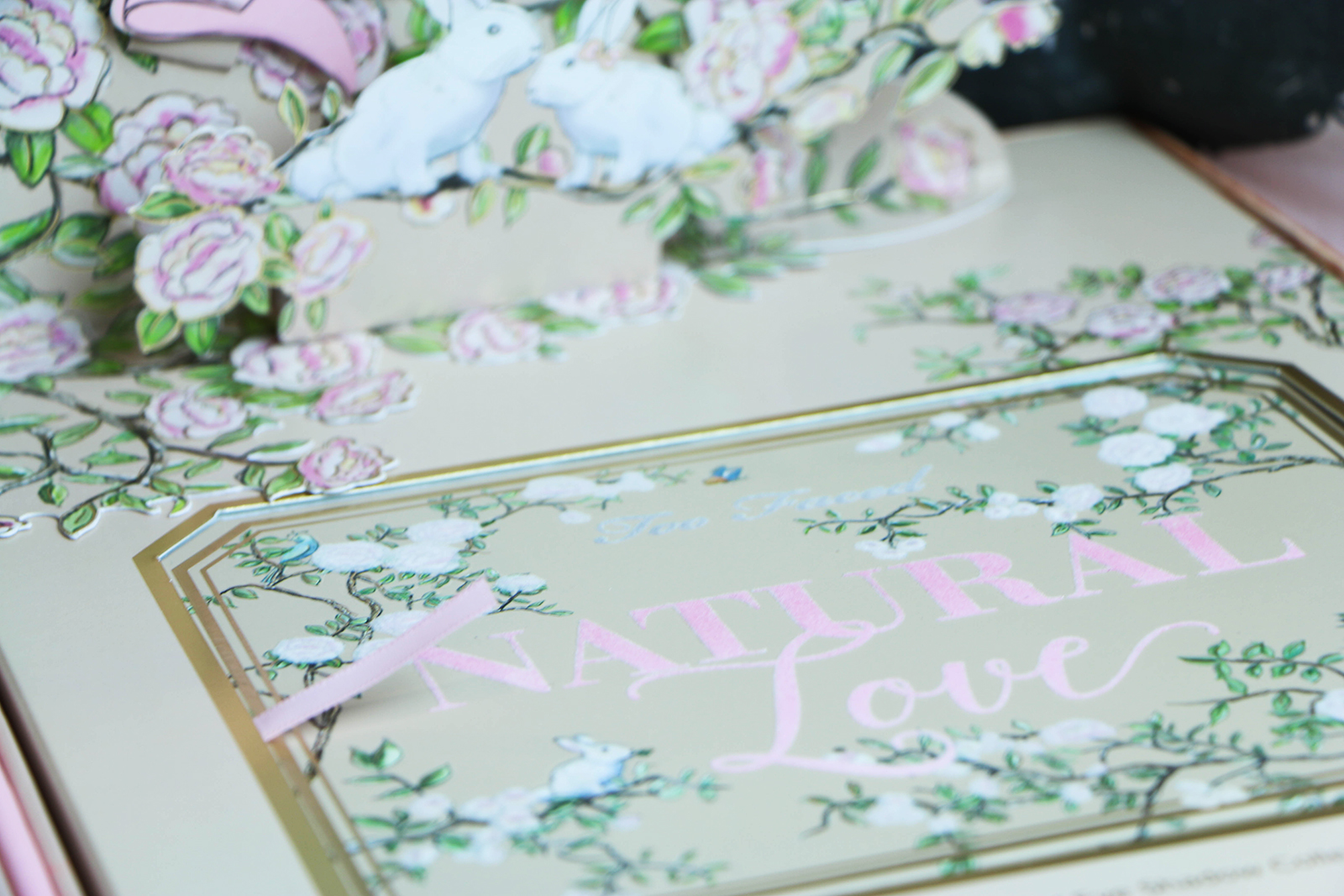 Too Faced Natural Love_7