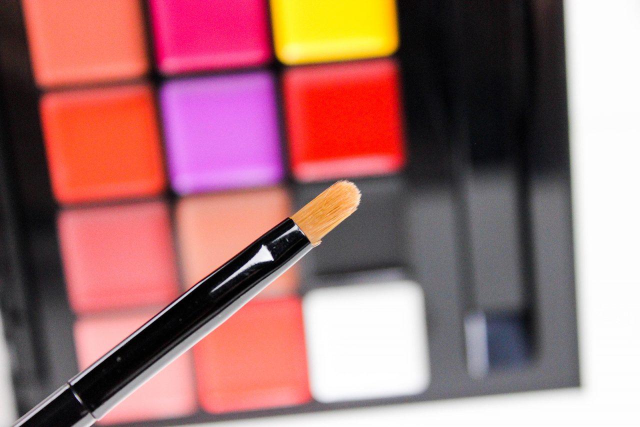 Anastasia-Beverly Hills-Lip-Palette-revue-11